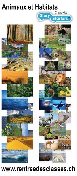 """Pack de 40 flles """"Story Starters"""" Animaux et habitats"""