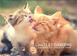 CHATS ET CHATONS: L'AGENDA-CALENDRIER 2018