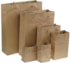 Set de 6 sacs en papier