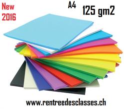 Pqt de 500 flles papier àdessin 17 couleurs assorties 125g/m2