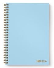 Carpe Diem - Cahier à Couverture Rigide B5