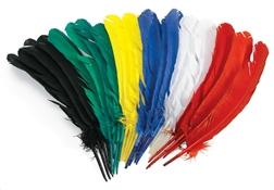 Plumes d'Indiens multicolores  30cm