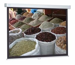 Ecrans de projection ProScreen